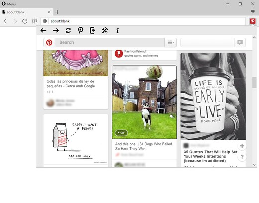 Copie d'écran pour Pinterest™ Panel