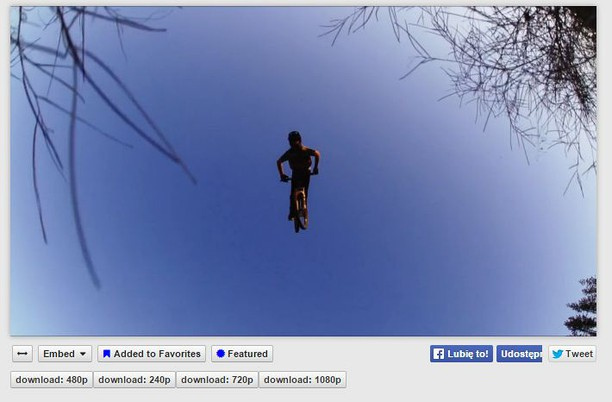 Captura de pantalla para Pinkbikedl - Pinkbike.com video downloader