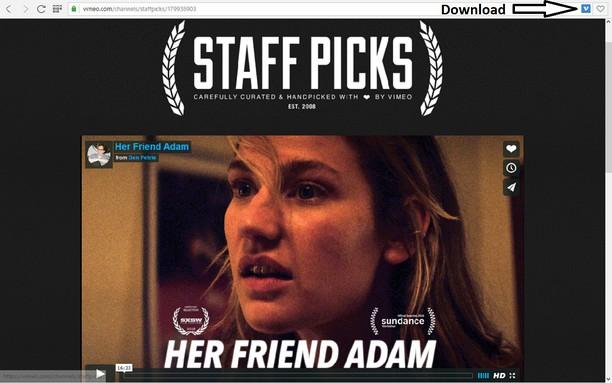 Screenshot for Vimeo Downloader
