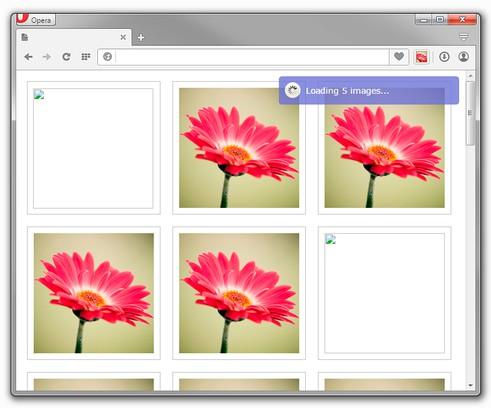 Copie d'écran pour Images reloader