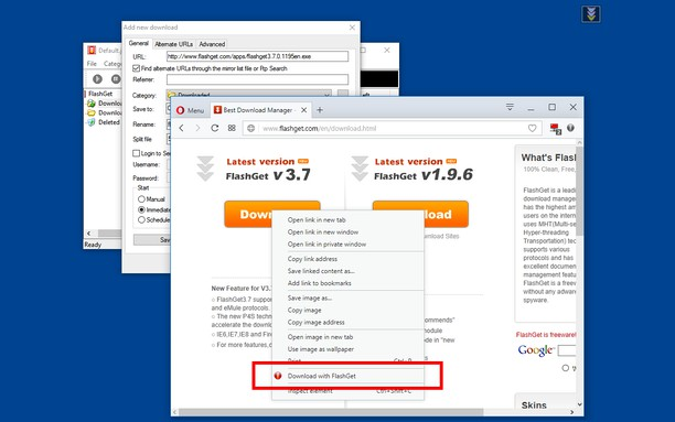 Skjermbilde for Download with FlashGet