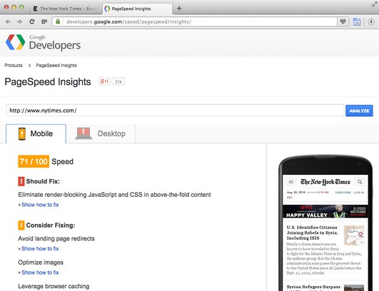 Screenshot for PageSpeed Insights