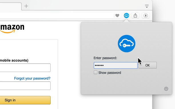 Знімок вікна SafeInCloud Password Manager