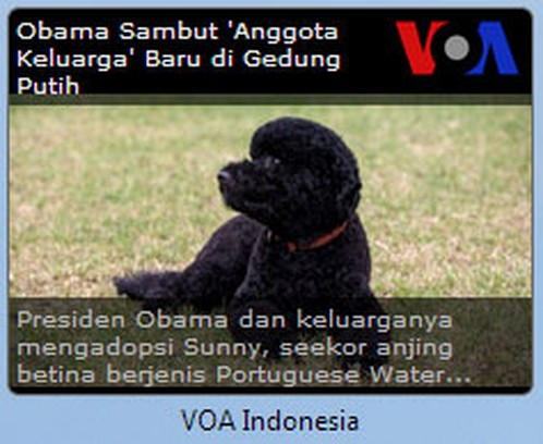 Skærmbillede for VOA Indonesia