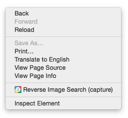 Captura de tela de Google Reverse Image Search