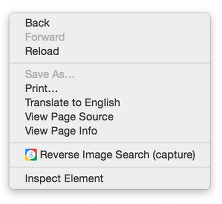 Screenshot for Google Reverse Image Search