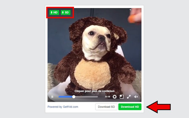 Skärmbilder för Fb Video Downloader