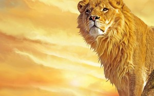 Pictogram voor Lion KING
