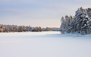 Ikona pakietu Landscape in Snow