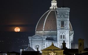 Іконка для Firenze