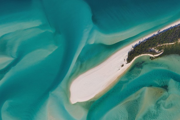Снимок экрана для The Great Barrier Reef