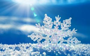 Значок для Snowflake 1