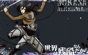 Ikoan foar Mikasa