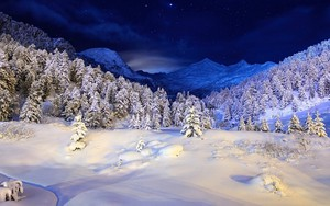 Ikona balíka Winternight