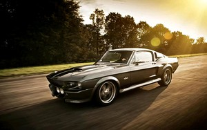 Ikona pakietu Ford Mustang gt500 shelby eleanor
