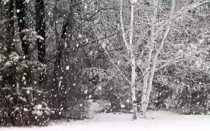 Значок для Snow