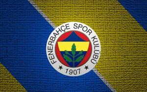 Значок для Fenerbahçe SK