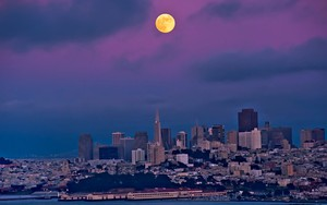 Ikona pakietu Orange Moon Against The Purple City