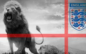 Symbol für Lions FC