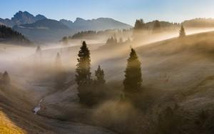 Значок для Italian fogs