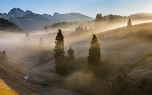 Italian fogs के लिए आइकन
