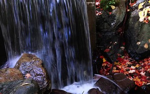 Icona per Waterfall Stream Nature
