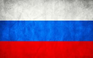 Ikona pro russia Flag