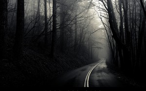 Kohteen into the mist kuvake