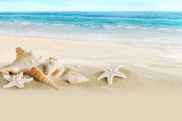 Снимок экрана для Ocean beach