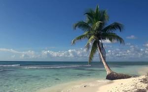 Symbol für Tropical Beach 4K