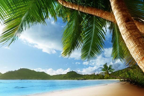 Снимок экрана для Beach