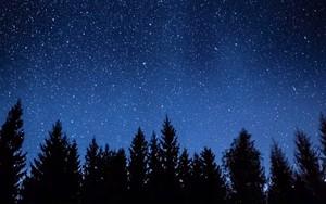 Ikona za Stars