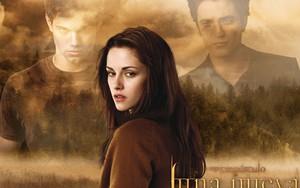 The Twilight Saga by x-at ikonja