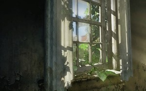 Ikona balíka The Last of Us - Window - HD