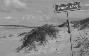 Icono de Danmark Beach