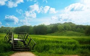 Ikona balíka Green and Beautiful Sky