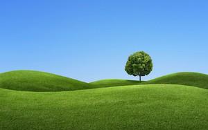 Pictogram voor green