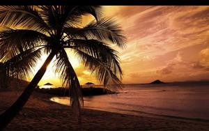 Значок для Paradise On Earth