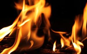 Εικονίδιο Burning Desire