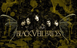 Ikona pakietu Black Veil Brides