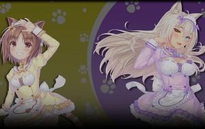 Ikona za Hikari & Yumi