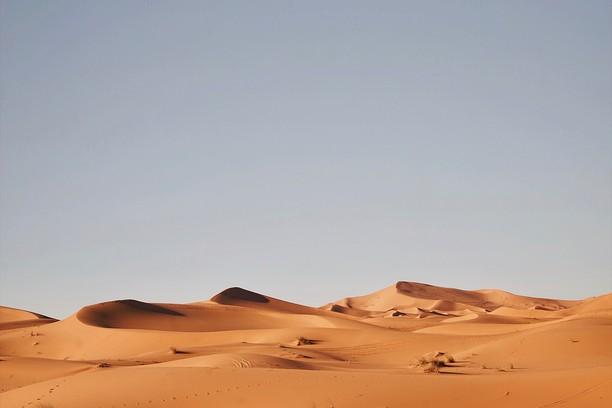 Снимка за Dry Desolation – Andrzej Kryszpiniuk