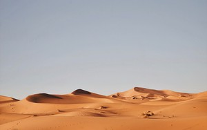 Значок для Dry Desolation – Andrzej Kryszpiniuk