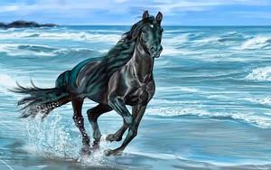 Ikona pakietu Black Stallion