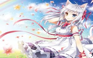 Icono de White haired catgirl with heterochromatic eyes