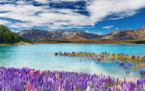 Значок для Lake Tekapo, New Zealand