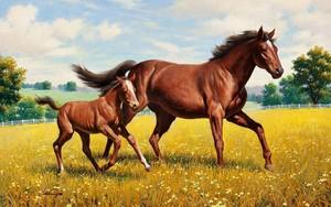Значок для Brown Stallion