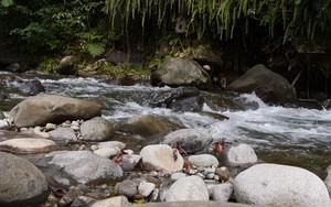 Ikona pro Water running over the rocks