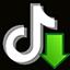 Ikona za TikTok download video, audio and cover art