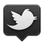 Icon for Twitter Public Timeline